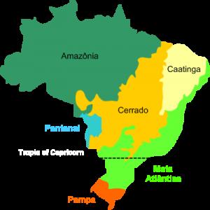 brasil biomas